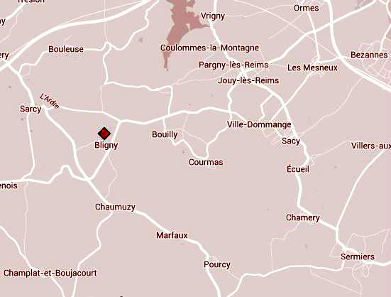 Bligny Hill map