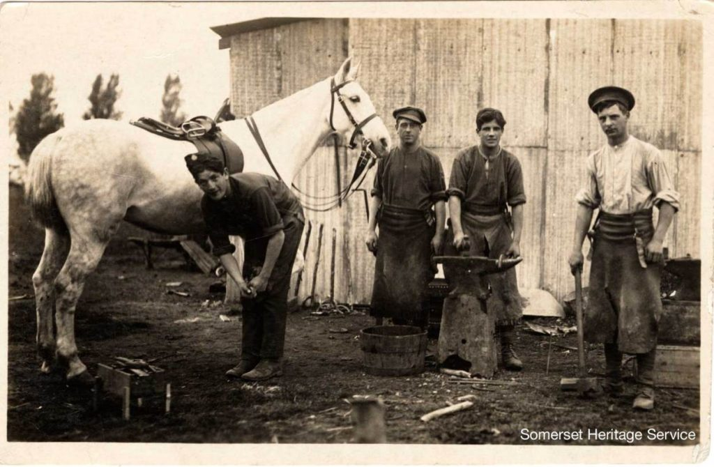 Farrier shoeing Horses in 1914 . The making of the horseshoes was Ted's occupation so less dangerous than the fitting of them.
