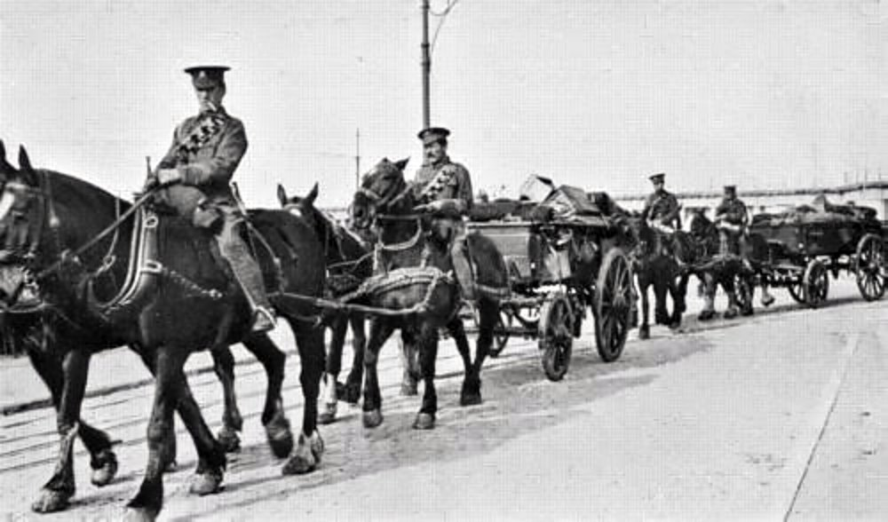 Sidney was a driver in the Horse Transport Companies in WWI . This photograph showing a typical service wagon train.